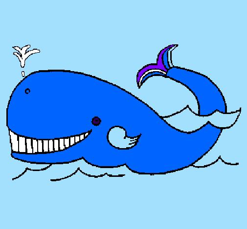 desenho de baleia pintado e colorido por usuário não registrado o