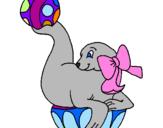 Desenho Foca a jogar à bola pintado por Menina