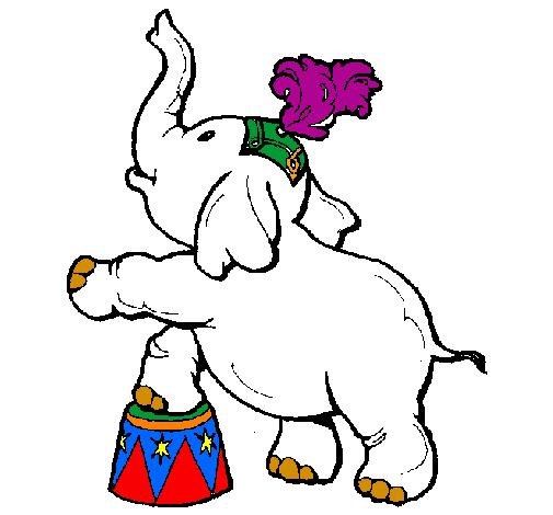 Desenho Elefante pintado por elefante equilibrista