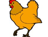 Desenho Galinha pintado por galinha