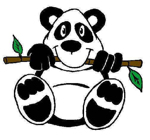 desenho de urso panda pintado e colorido por usuário não registrado