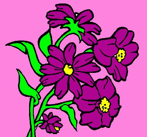 Desenho De Flores Pintado E Colorido Por Usuário Não