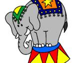 Desenho Elefante a actuar pintado por Elefante