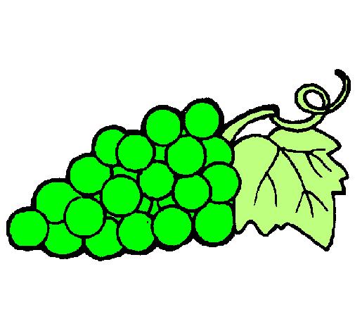 desenho de uvas pintado e colorido por usuário não registrado o dia