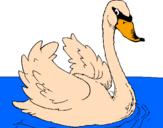 Desenho Cisne na água pintado por NATALIA