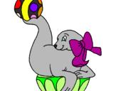 Desenho Foca a jogar à bola pintado por foca
