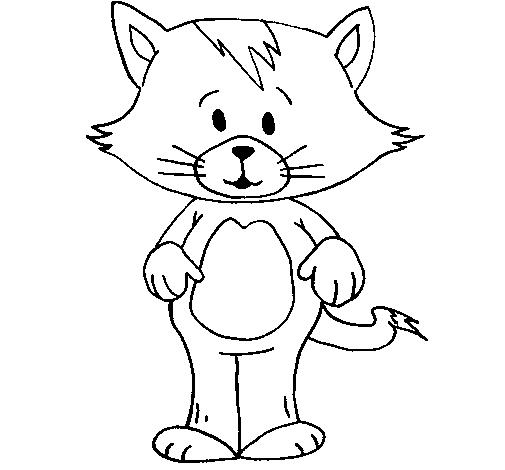 desenho de gato com franja pintado e colorido por usuário não