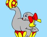 Desenho Foca a jogar à bola pintado por Milena foca combinante