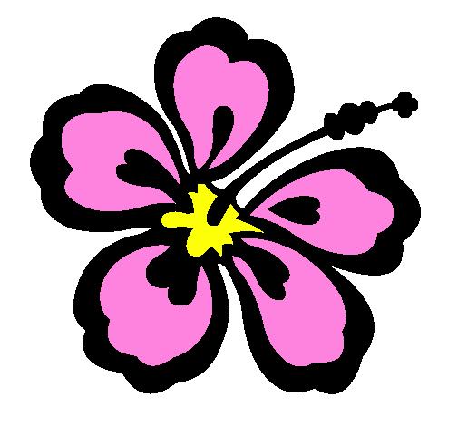 desenho de flor surfista pintado e colorido por usuário não