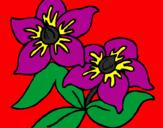Desenho Flores pintado por Pollyanny