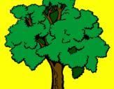 Desenho Árvore pintado por mateus