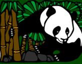 Desenho Urso panda e bambu pintado por Amanda