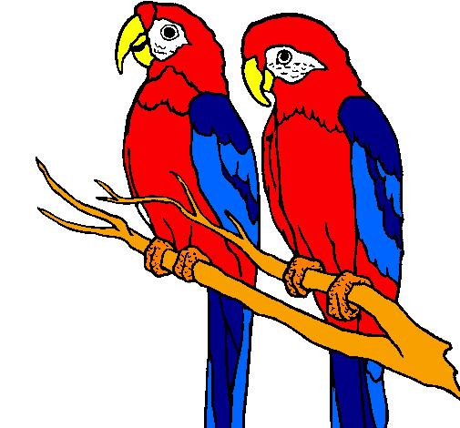 desenho de louros pintado e colorido por usuário não registrado o