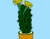 Desenho Cacto com flores pintado por Marcia