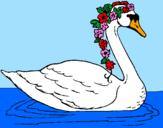 Desenho Cisne com flores pintado por Gabriele