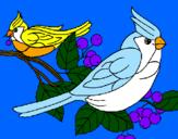 Desenho Pássaros pintado por mano