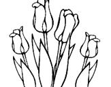 Desenho Tulipa pintado por a