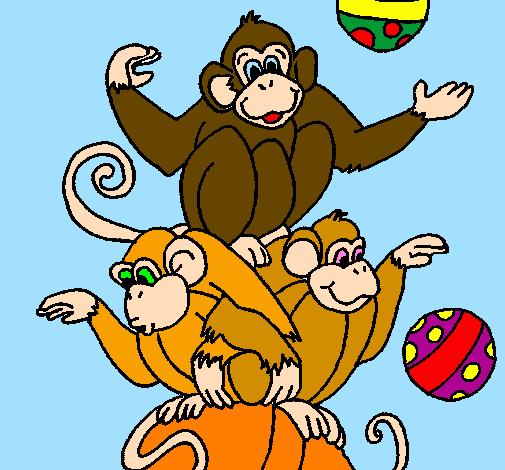 Desenho Macacos a fazer malabarismos pintado por bcj