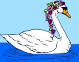 Desenho Cisne com flores pintado por AMANDA