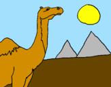 Desenho Camelo pintado por leticia