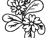 Desenho Flores pintado por Aline