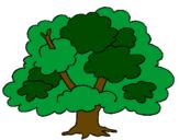 Desenho Árvore pintado por erika