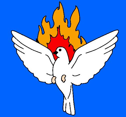 pombinha para colorir pombas para imprimir e colorir o mundo das