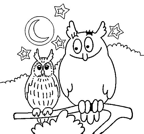 desenho de corujas pintado e colorido por usuário não registrado o