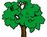 Desenho Árvore pintado por KETHLEN