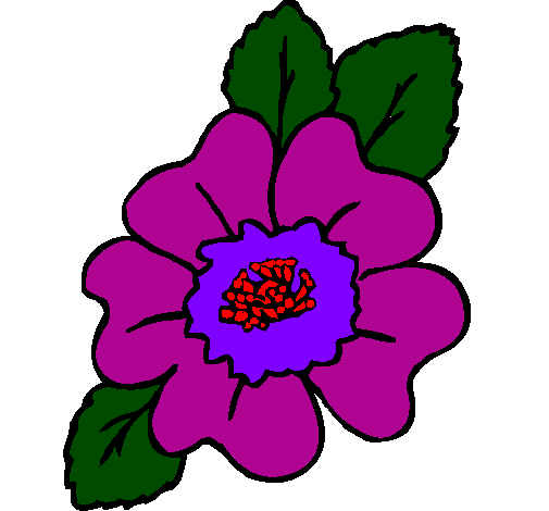 desenho de narciso pintado e colorido por usuário não registrado o