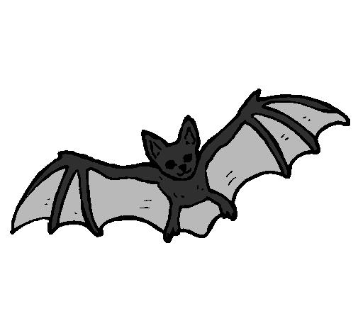 desenho de morcego a voar pintado e colorido por usuário não