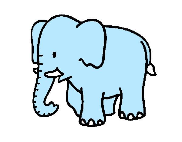 desenho de elefante pintado e colorido por sandi o dia 29 de
