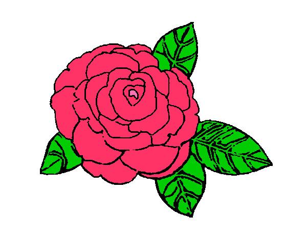 desenho de flor pintado e colorido por jhenifer o dia 16 de