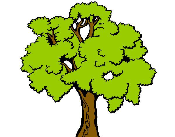 Desenho De árvore Pintado E Colorido Por Victo O Dia 11 De Junho Do 2012