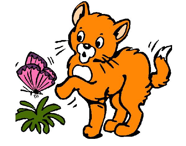 Desenho de gato e borboleta pintado e colorido por leal o - Dibujos de gatos pintados ...