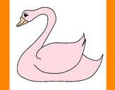 Desenho Cisne pintado por DANIELLY