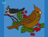 Desenho Pássaros pintado por Helen2012