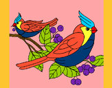 Desenho Pássaros pintado por missmirim