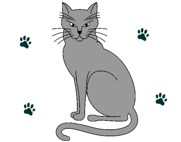 desenho de felino pintado e colorido por rexy o dia 25 de outobro do