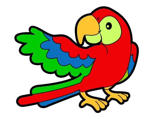 Papagaio Abrir A Asa Pintado Por Monalisa 1024698 on Dibujos Para Recortar