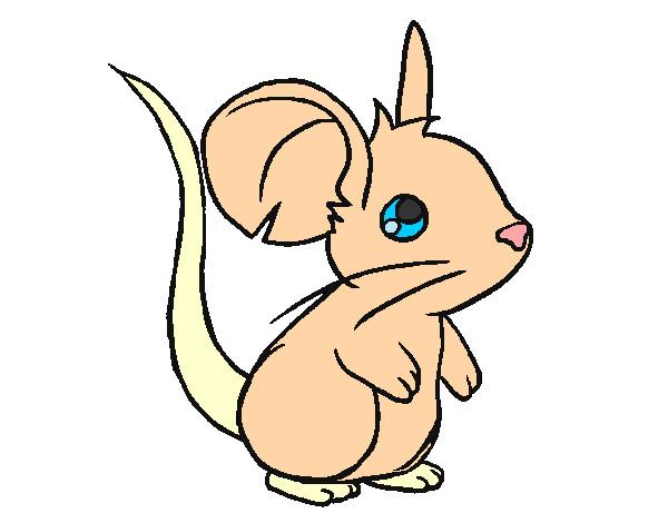 desenho de ratinho pintado e colorido por yasminfeli o dia 28 de
