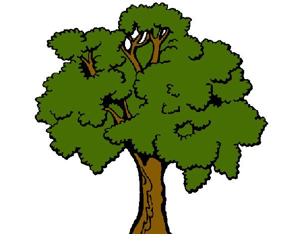 Imagens De Arvore Para Imprimir: Desenho De Árvore 1 Pintado E Colorido Por Camil O Dia 07