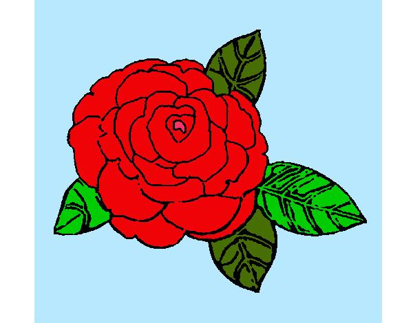 Dibujos De Corazones Coloridos: Desenhos De Rosas Para Colorir