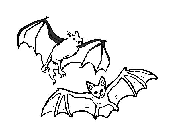 desenho de um par de morcegos pintado e colorido por jokas o dia 14