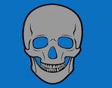 Desenho Crânio humano pintado por lonewolf