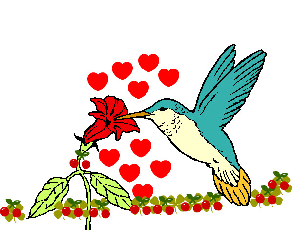 Desenho de Colibri e uma flor pintado e colorido por Dayannes o dia ...