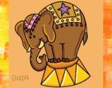 Desenho Elefante a actuar pintado por amauri