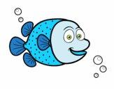 Peixe-balão de pontos brancos