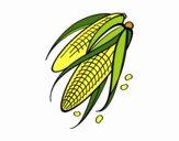Sabugo de milho