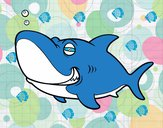 Tubarão-tigre